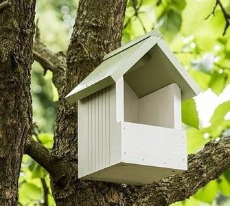 Bird Boxes & Baths