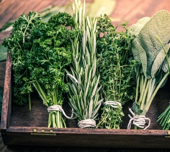 Herbs & Green Manures