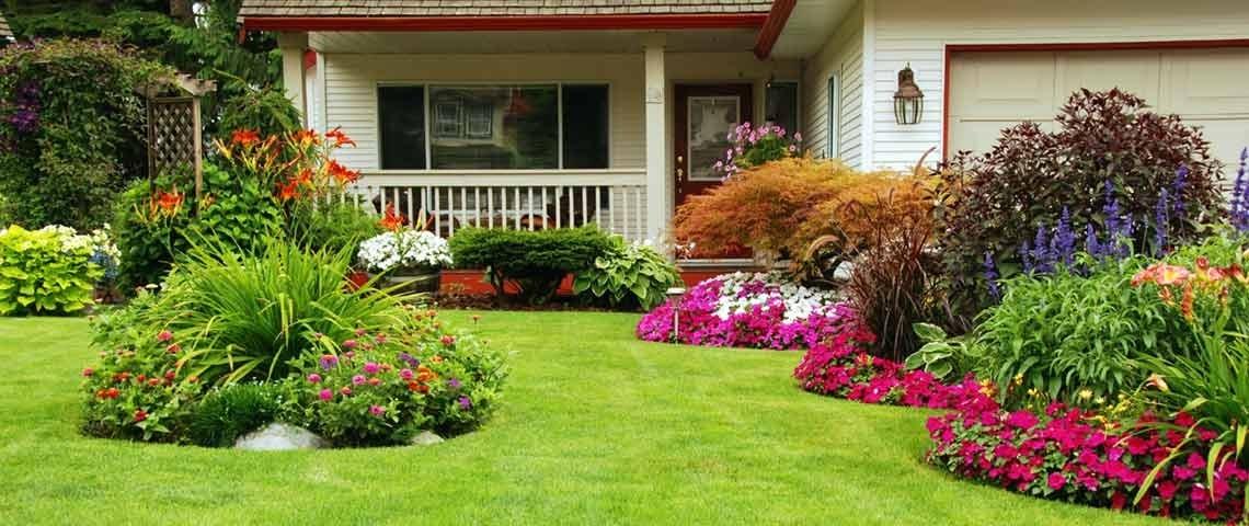 Lawn & Plantcare