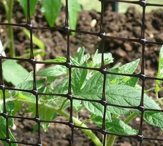 Garden Nets & Mesh